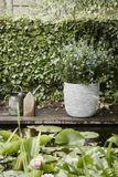 Záhradný kvetináč ROW 270