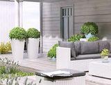 Záhradný kvetináč Scaleo